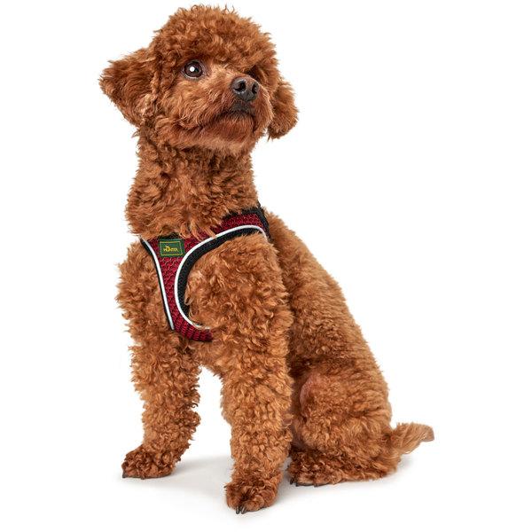 Hund i Hilo rød sele