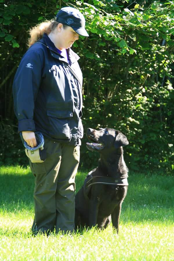Regler og vilkår omkring hundetræning med Hundegodbid