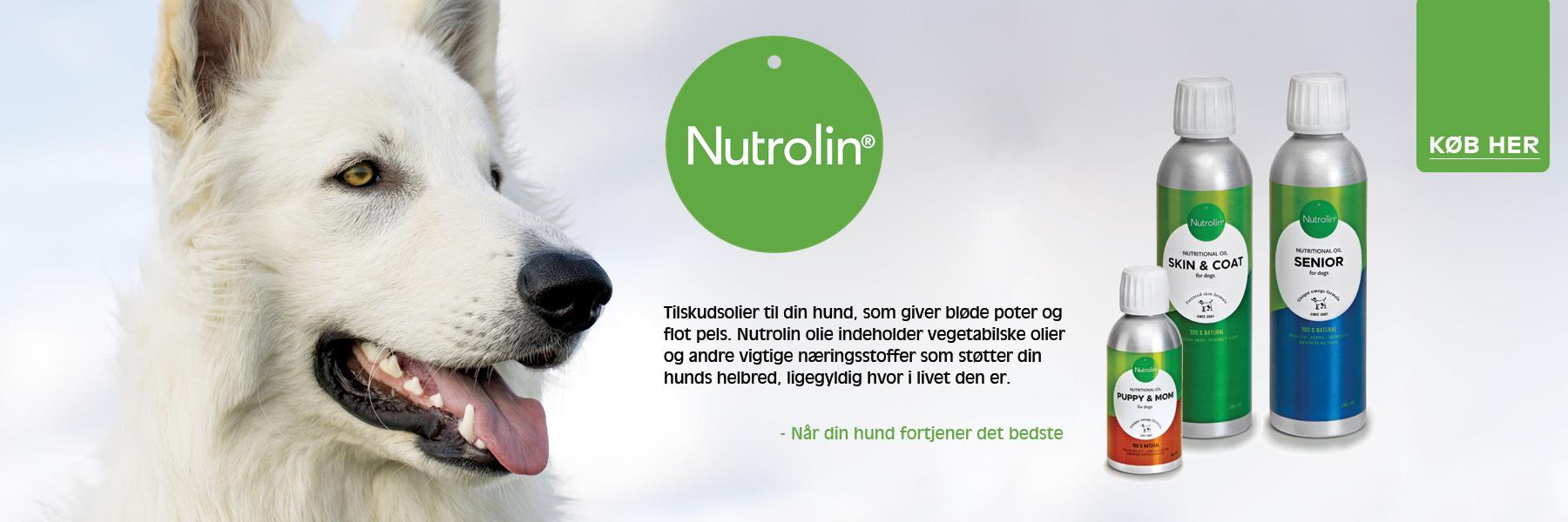 Nutrolin tilskudsolier til din hund ligemeget hvor den er i livet